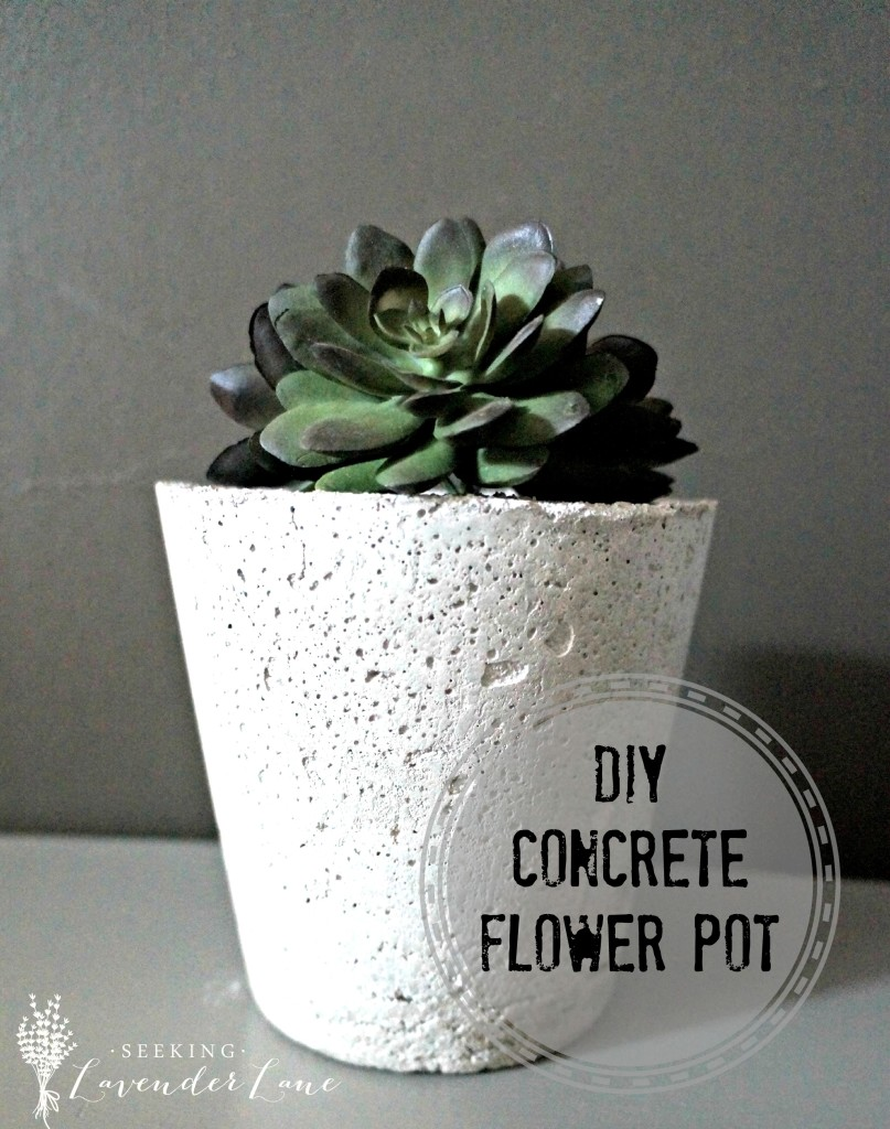 DIY Concrete Flower Pot