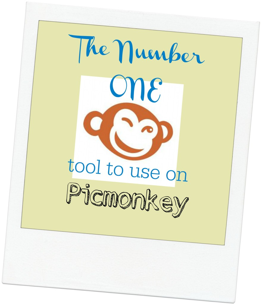 The Number One Tool to Use on Picmonkey