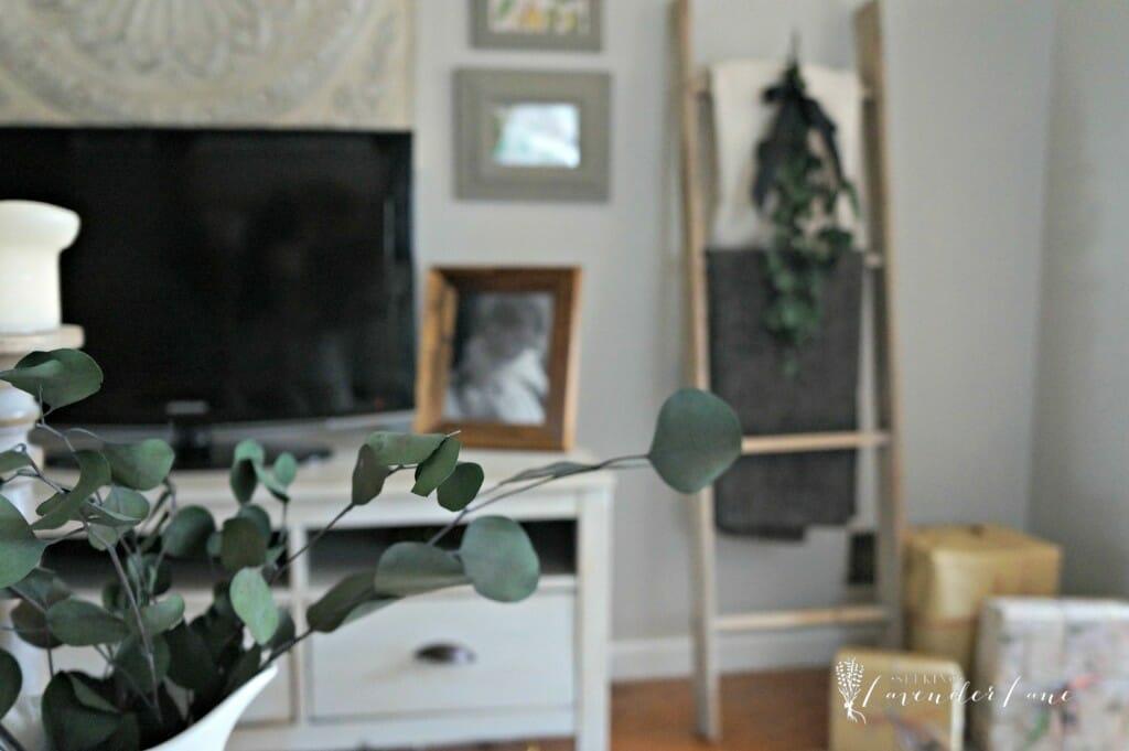 Eucalyptus Christmas Decor