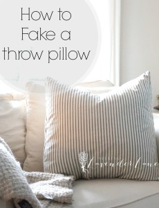 How to Fake a Throw Pillow