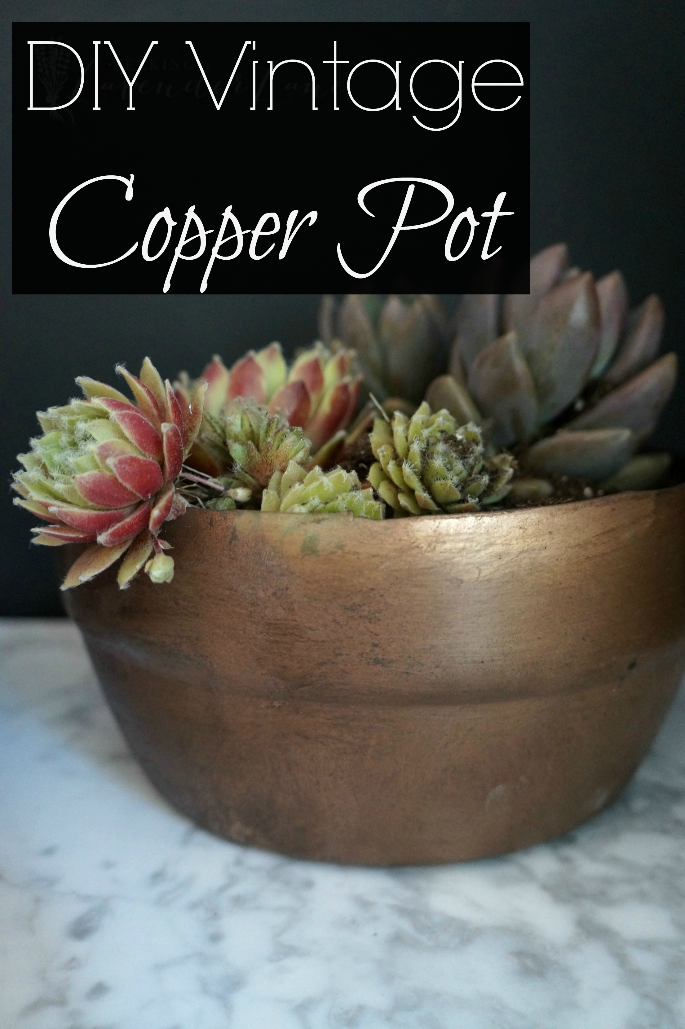 DIY Vintage Copper Pot with logo