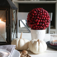 DIY Cranberry Topiaries
