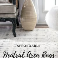 Affordable Neutral Area Rugs